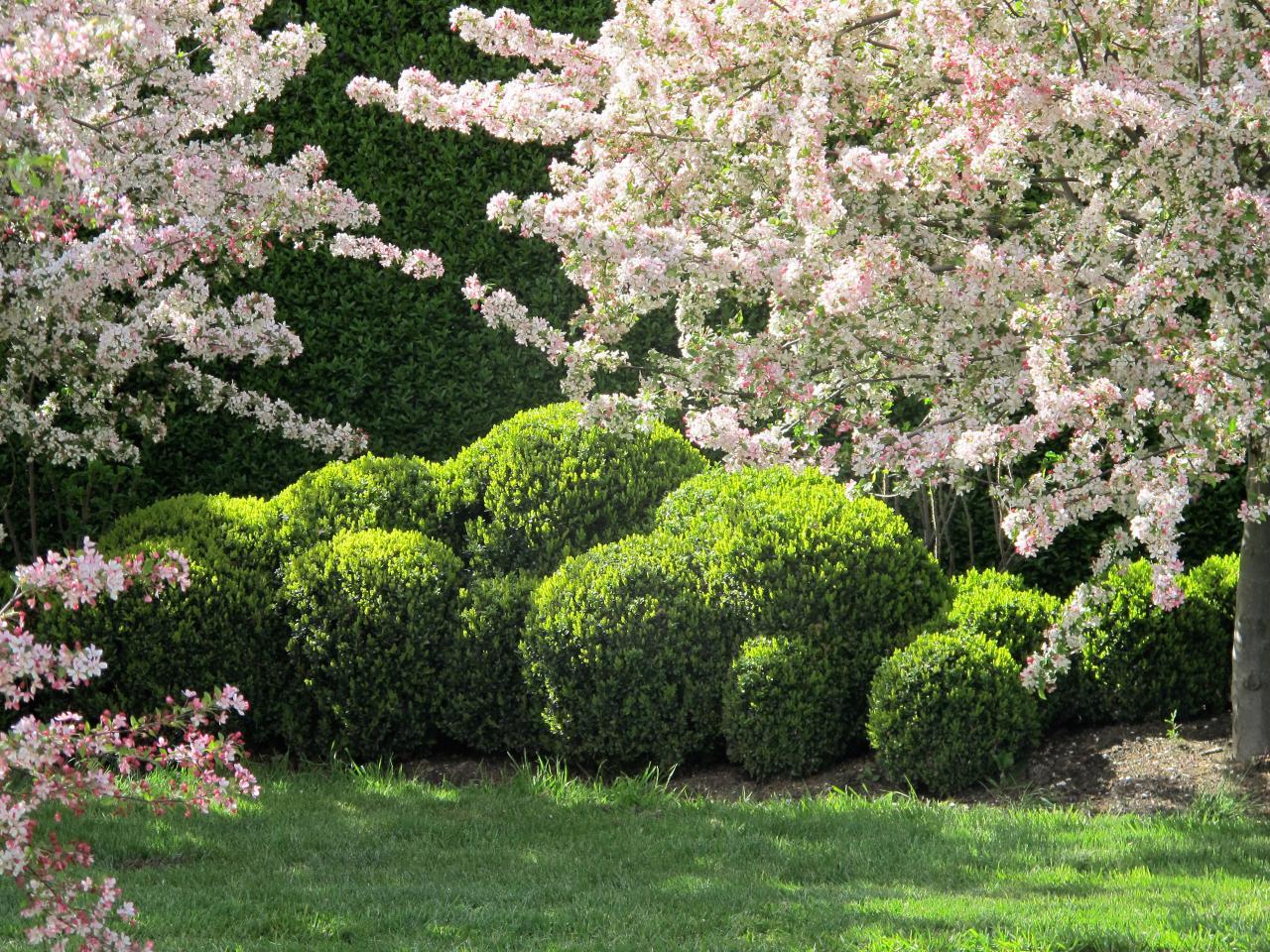 Stephanie Alexander Kitchen Garden Foundation Ngv Womens Association Spring Lunch Ngv