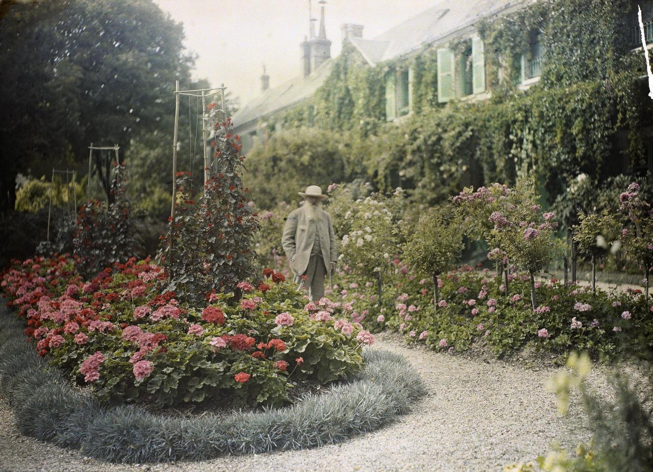 Monet\'s Garden: The Musée Marmottan Monet, Paris | NGV