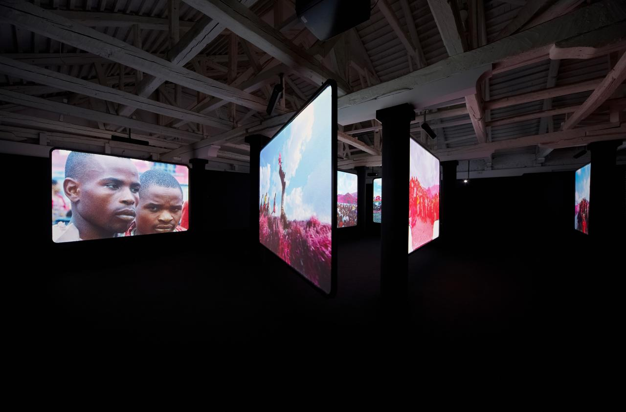 Installation view of Richard Mosse's The Enclave