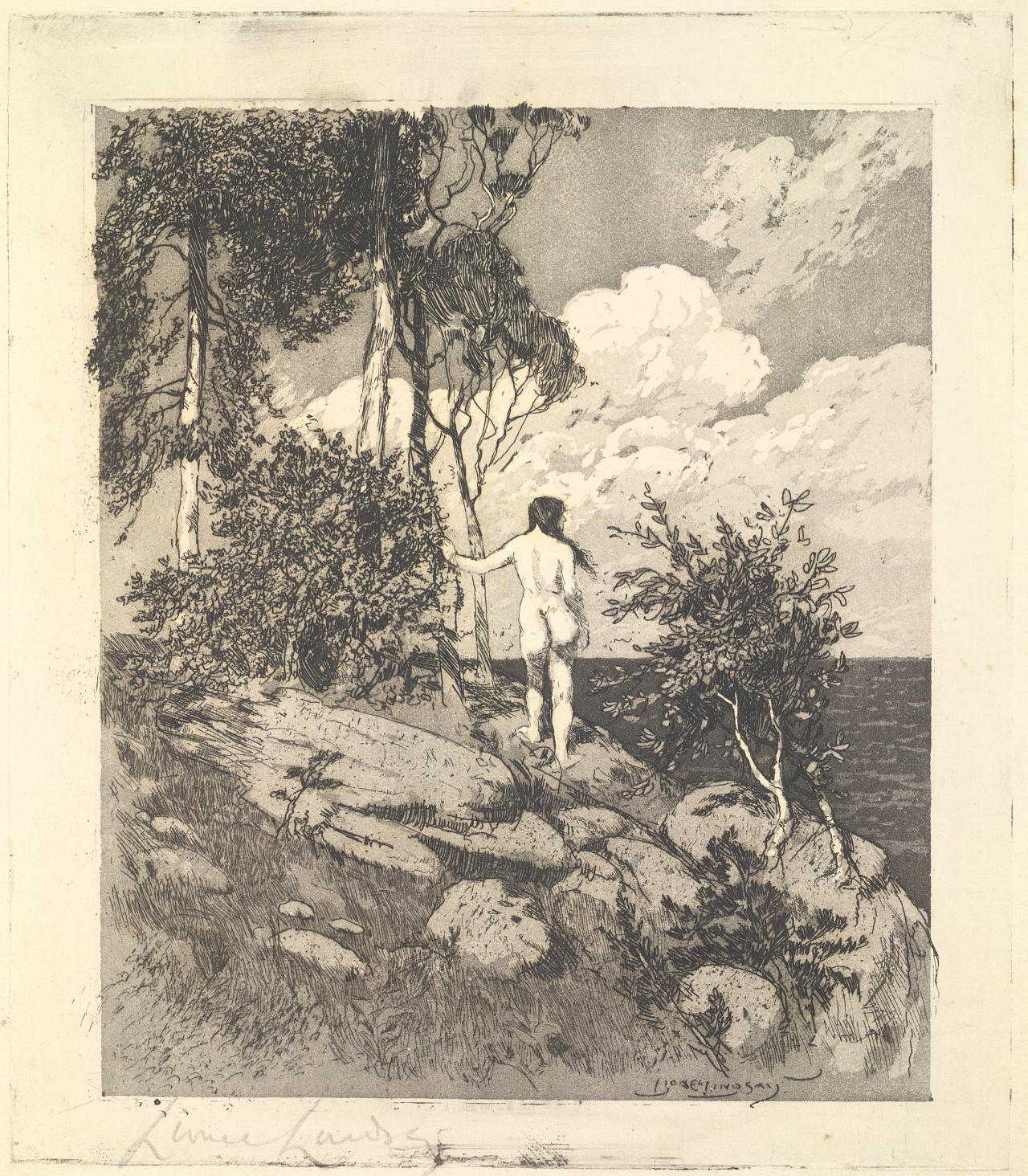 11 In What Appears To Be The First Instance Of Any Of The 1891 92 Print Acquisitions Being Reproduced Outside Their Publication In The Gallerys