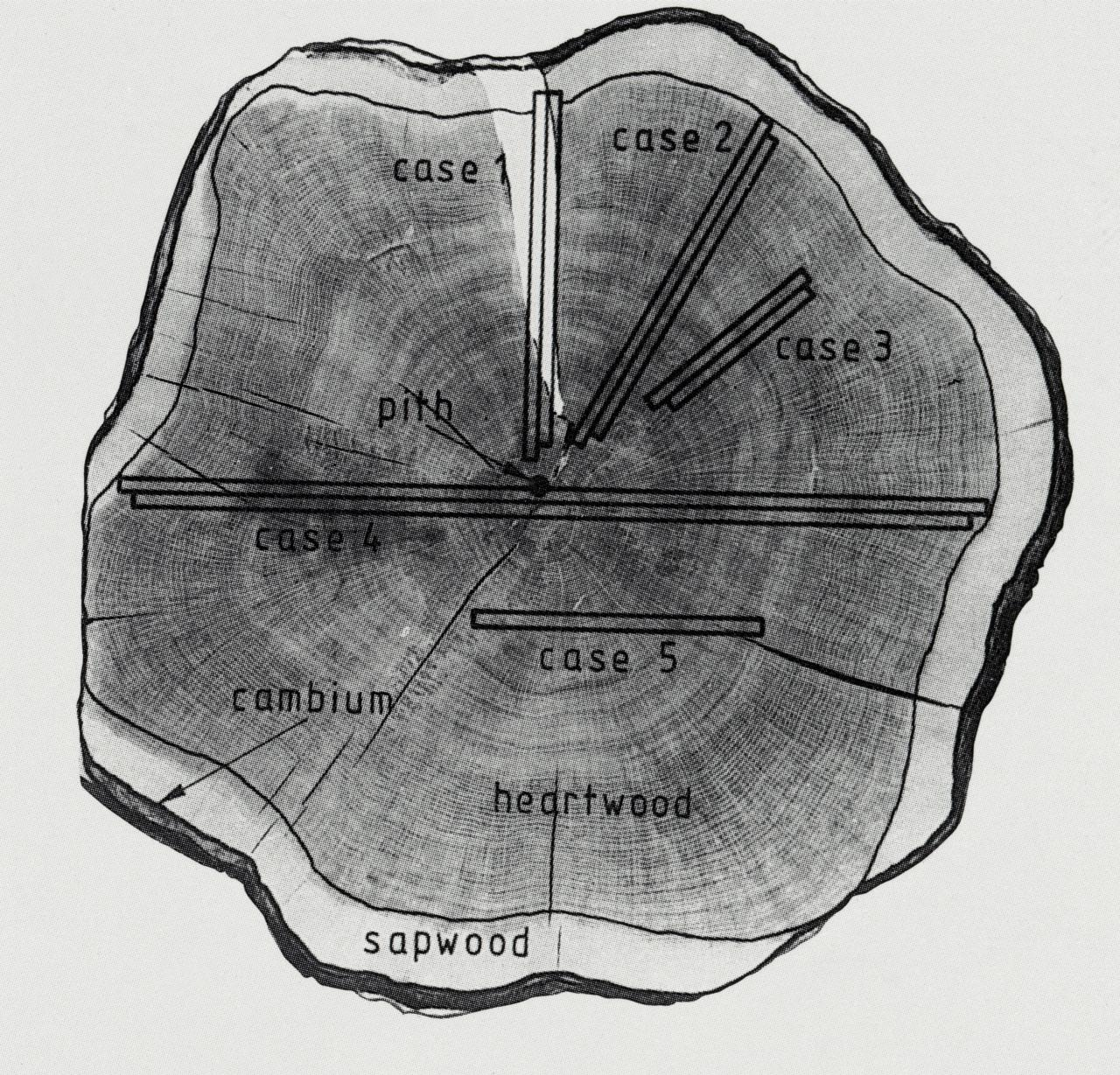 Dendrochronology is a method of dating by using