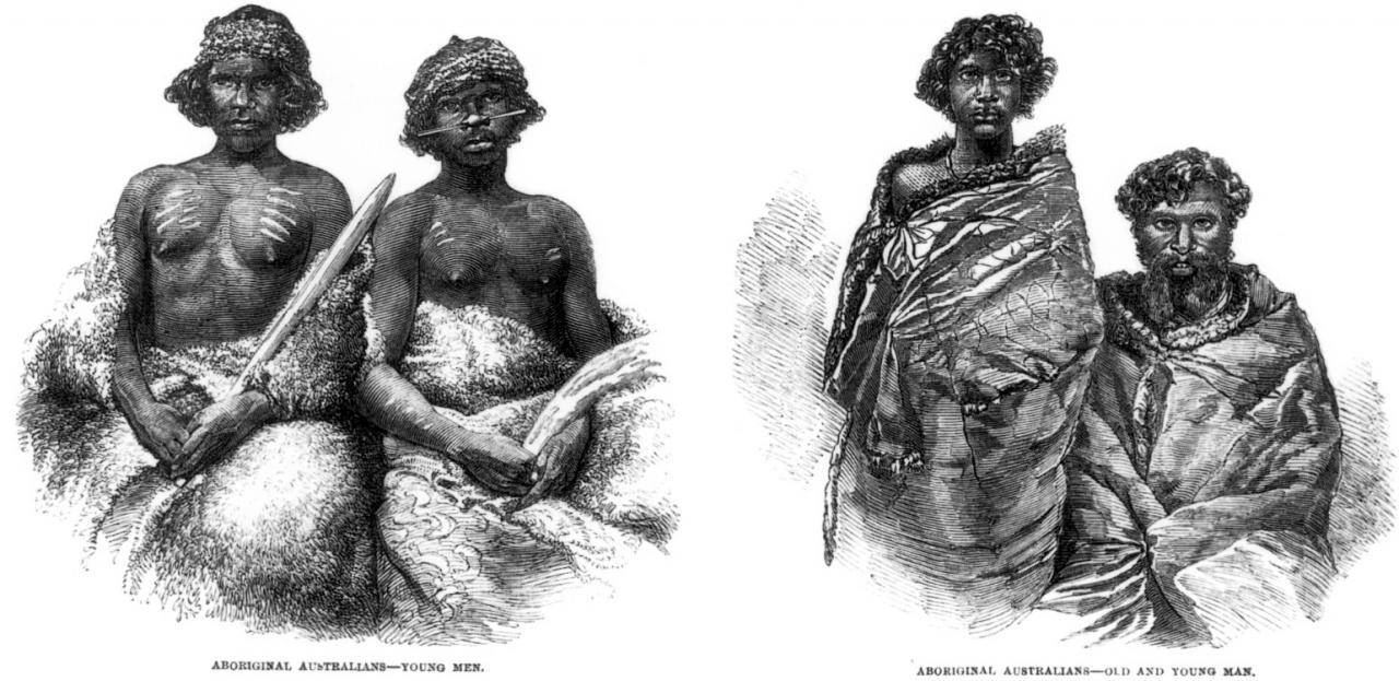 Aboriginals essay