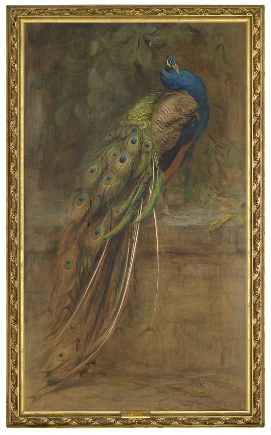 Edwin ALEXANDER The peacock 1900