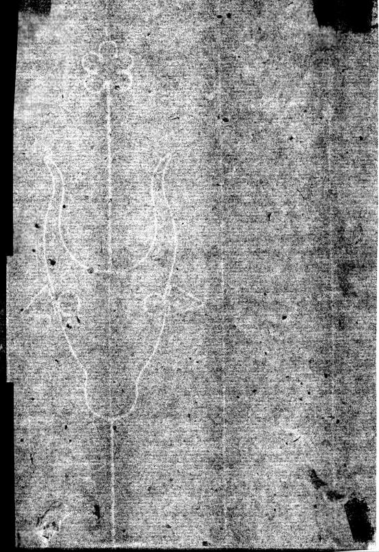 Albrecht DÜRER Madonna with the Pear 1511 (watermark)