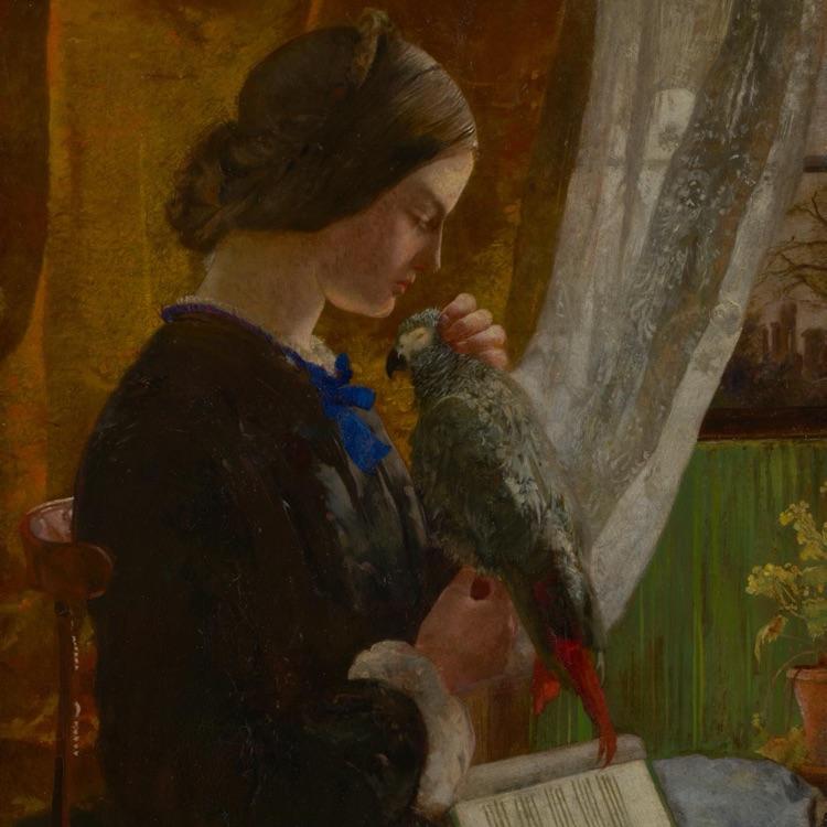Walter Howell DEVERELL<br/> <em>The grey parrot</em> (c. 1852-1853)