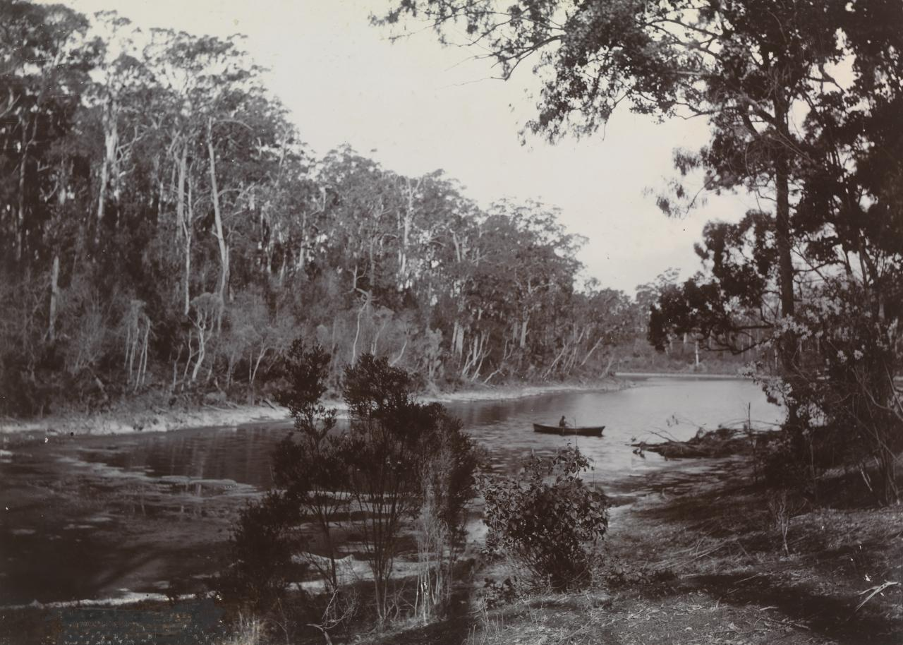 Toorloo Cove, Lake Tyers