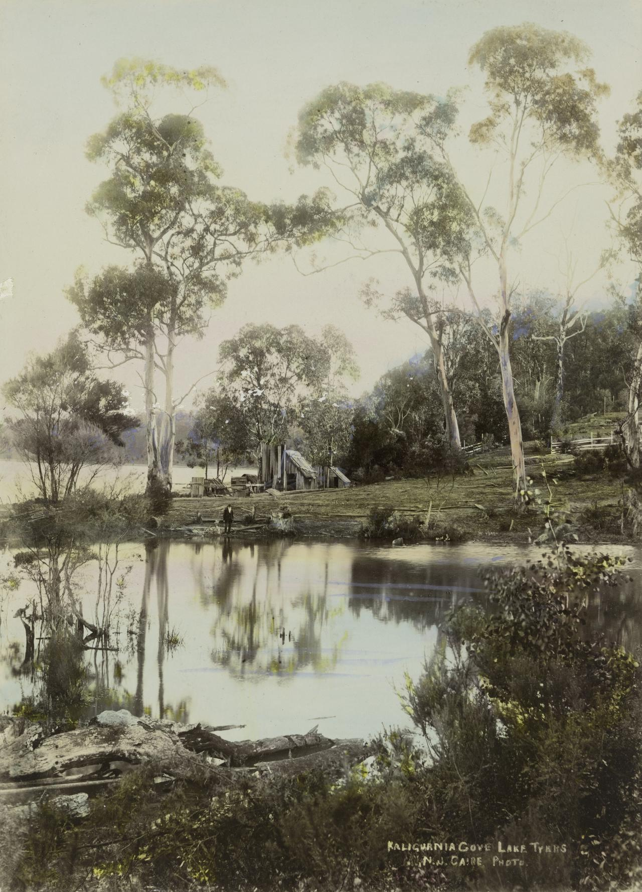Kaligurnia Cove, Lake Tyers