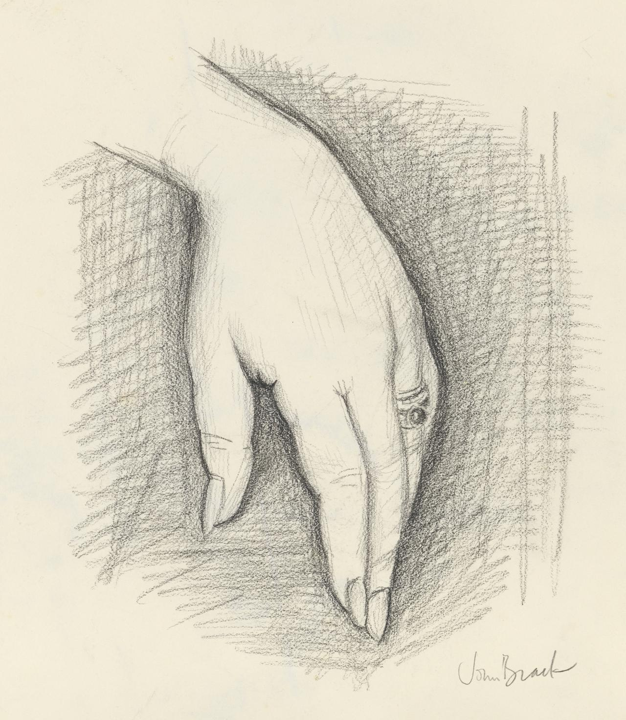 (Study for portrait of Anne Purves: hand)