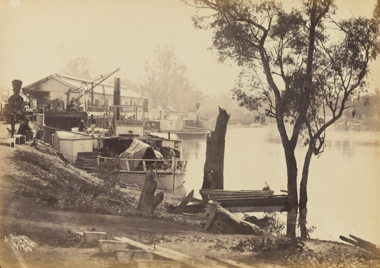 View of the River Murray, near Echuca, showing the Railway Wharf with steamers unloading