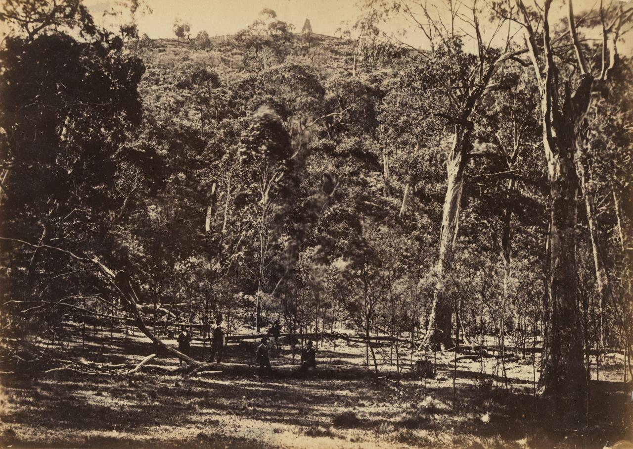 Interior of the crater at Mount Franklin