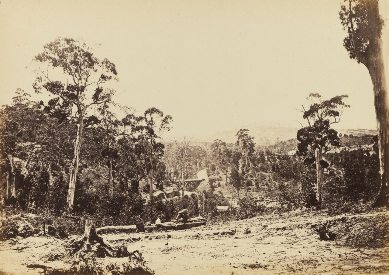 Scene in the Jim Crow Ranges