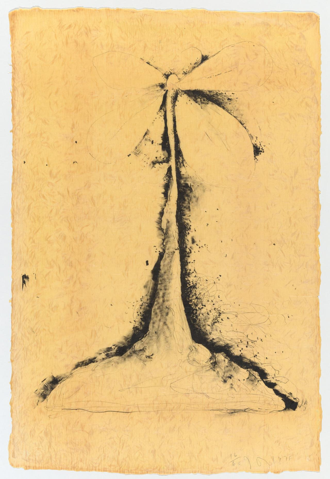 Lithographs of the sculpture: the plant becomes a fan 2