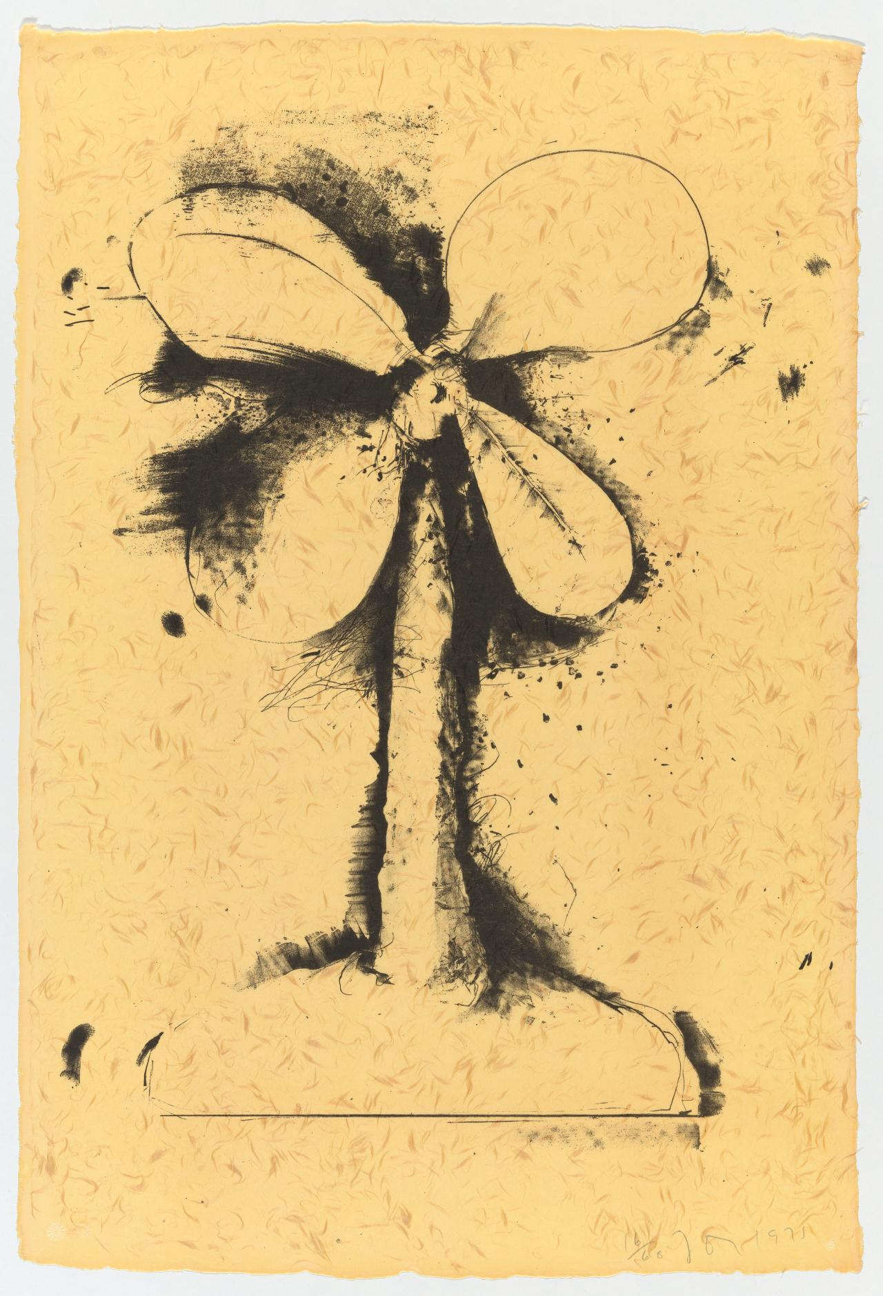 Lithographs of the sculpture: the plant becomes a fan 3