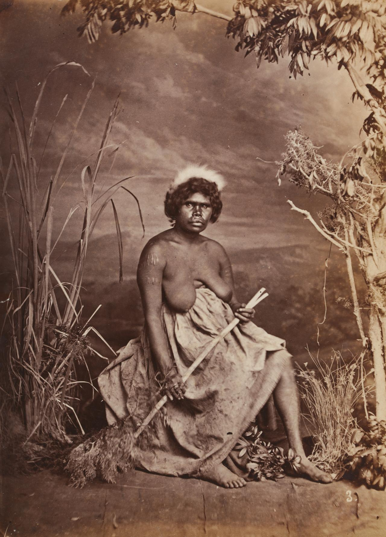 No title (Aboriginal woman holding a forked stick)