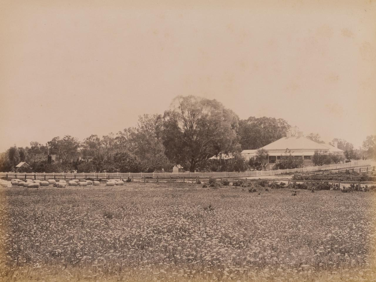 Homestead, Moorara Station, Darling River