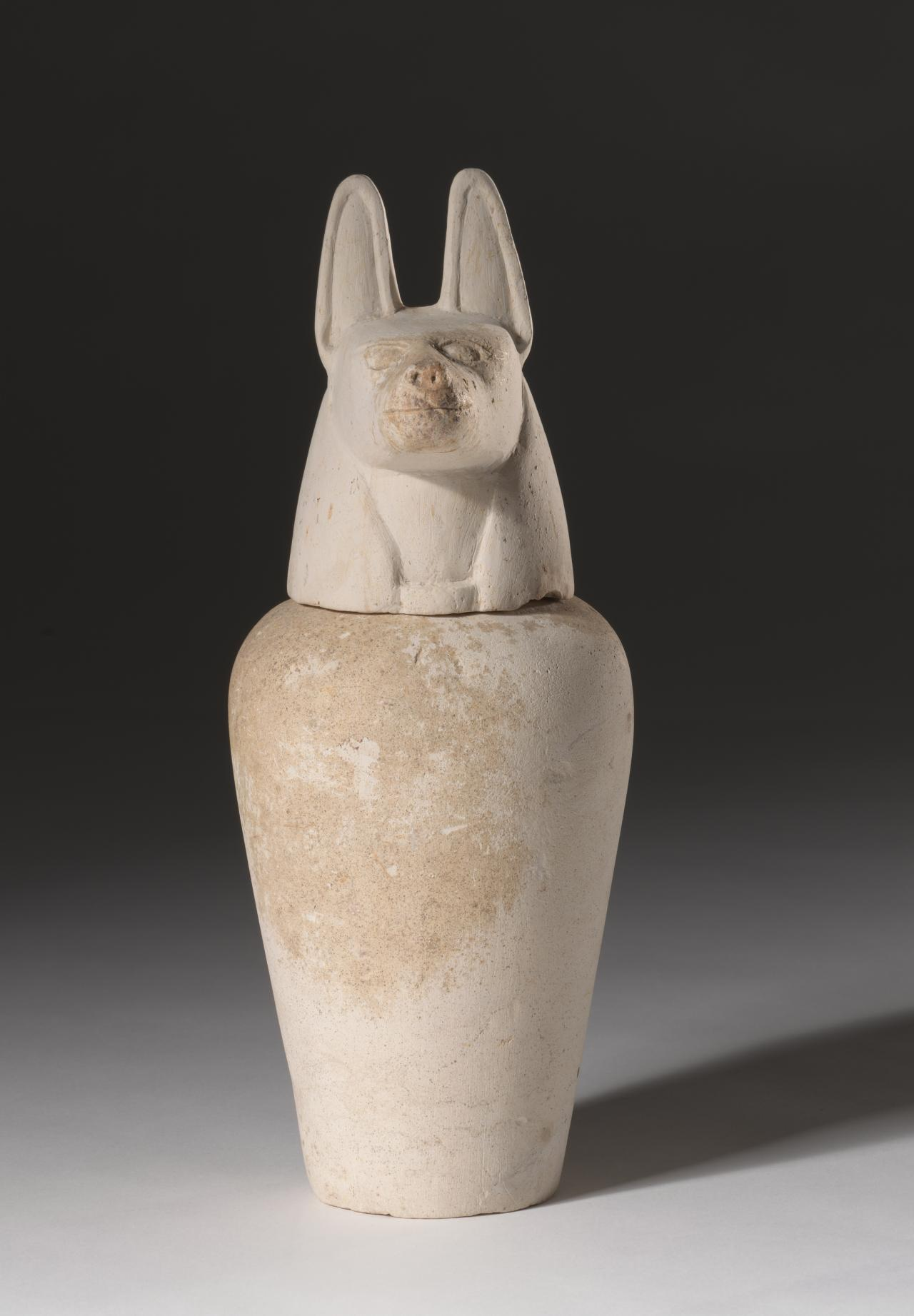 Canopic jar with lid representing Duamutef