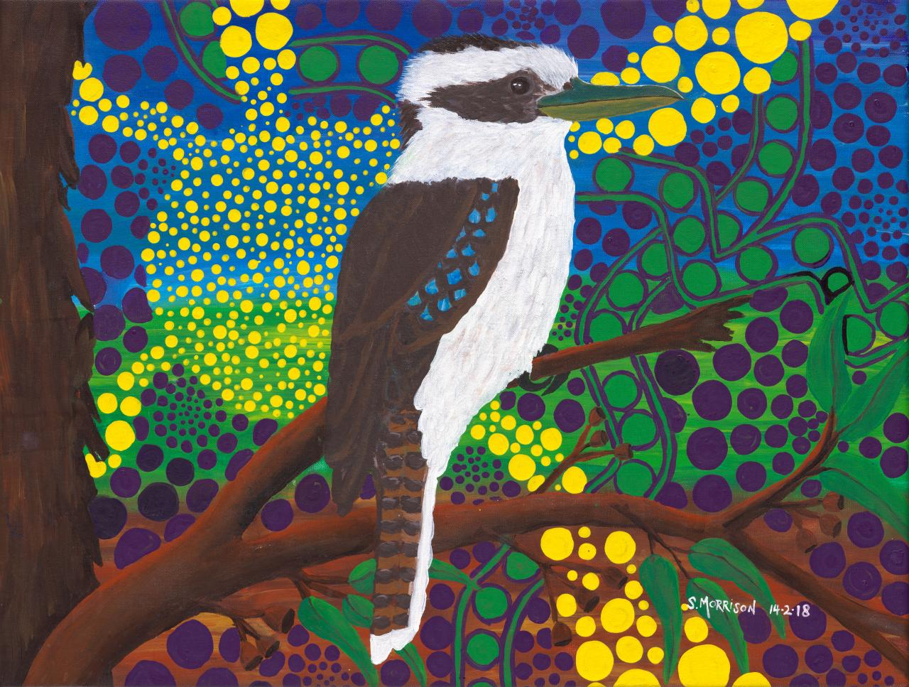 Journey of the kookaburra