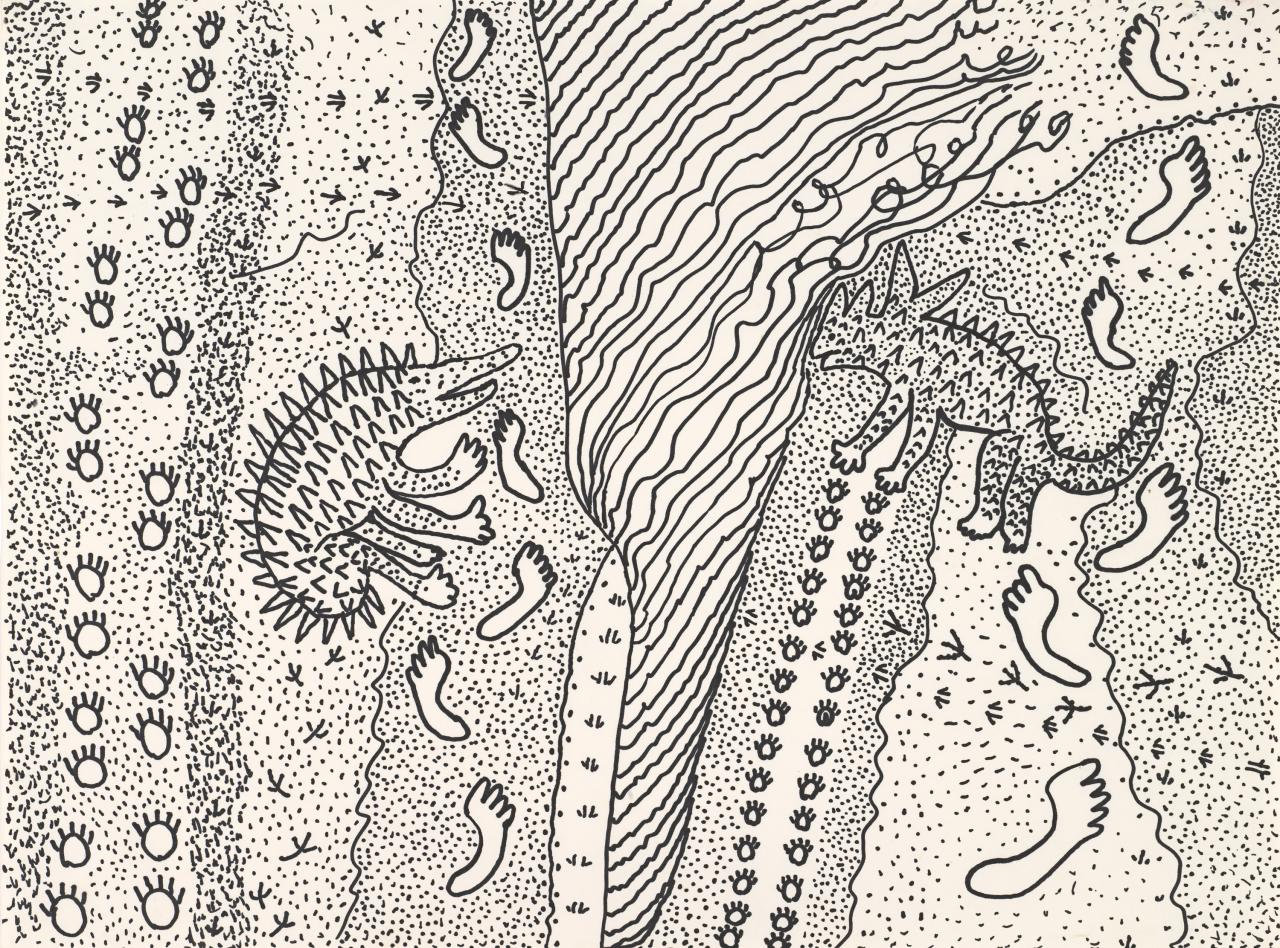 Untitled (Echidna and lizard)