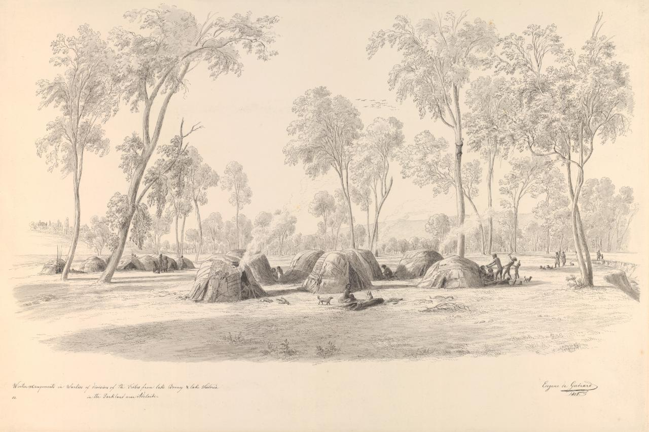 Winter encampments in wurlies of divisions of the tribes from Lake Bonney and Lake Victoria in the parkland near Adelaide