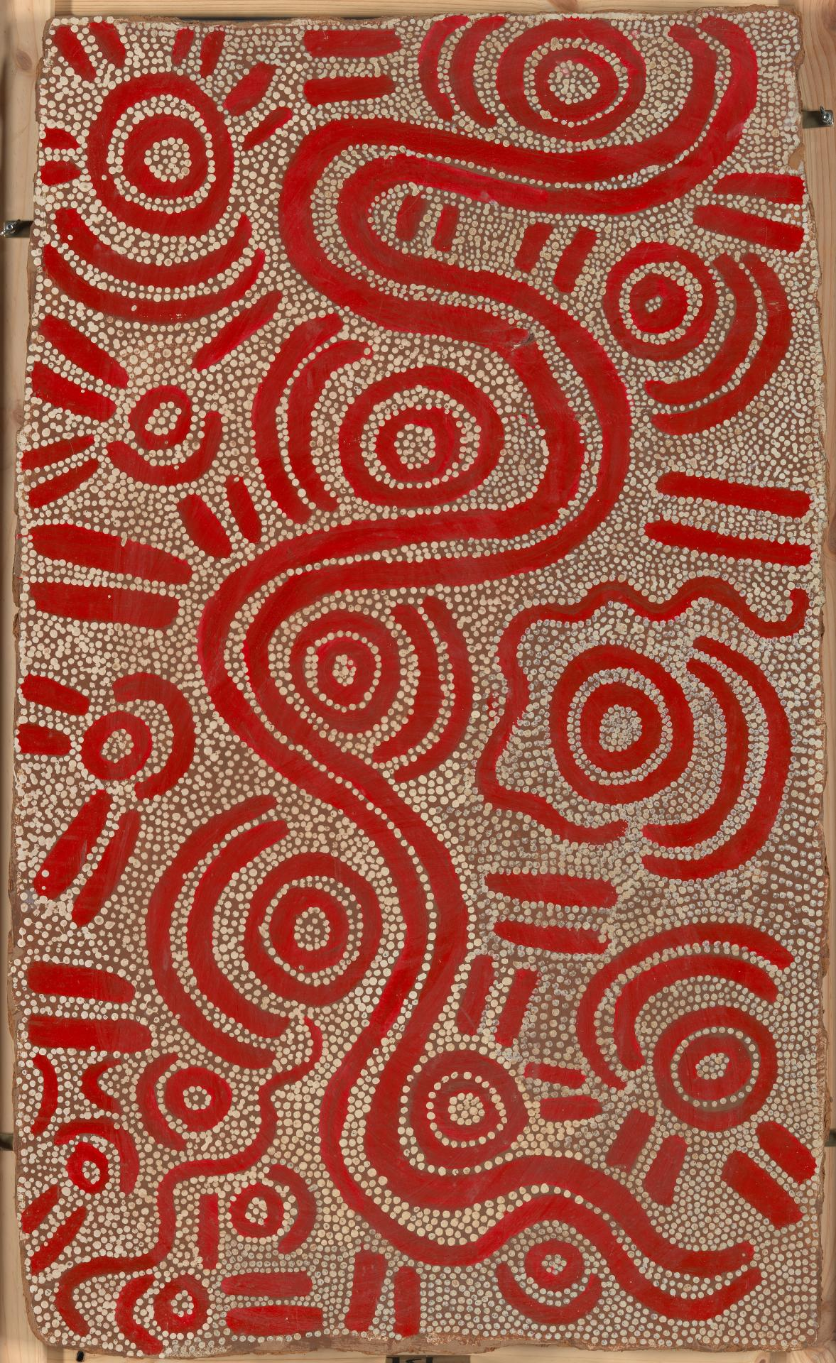 Ngapa Jukurrpa at Mikaniji (Water Dreaming at Mikaniji)