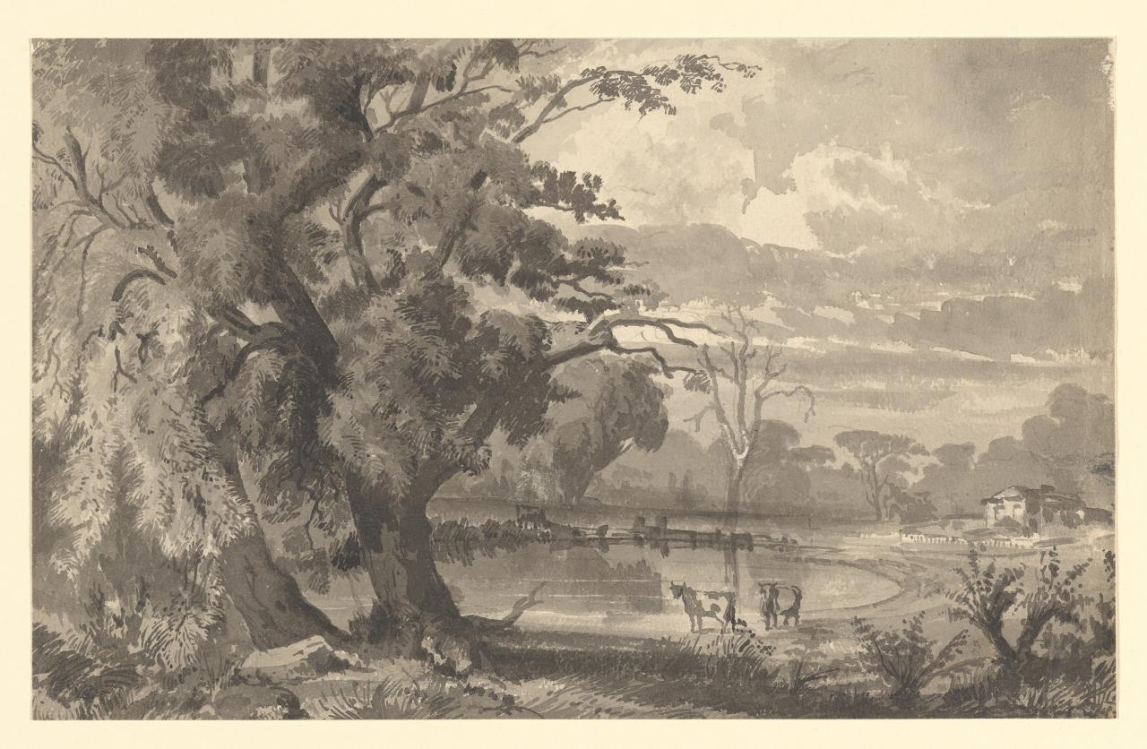 A house by the waterside: trees and cattle