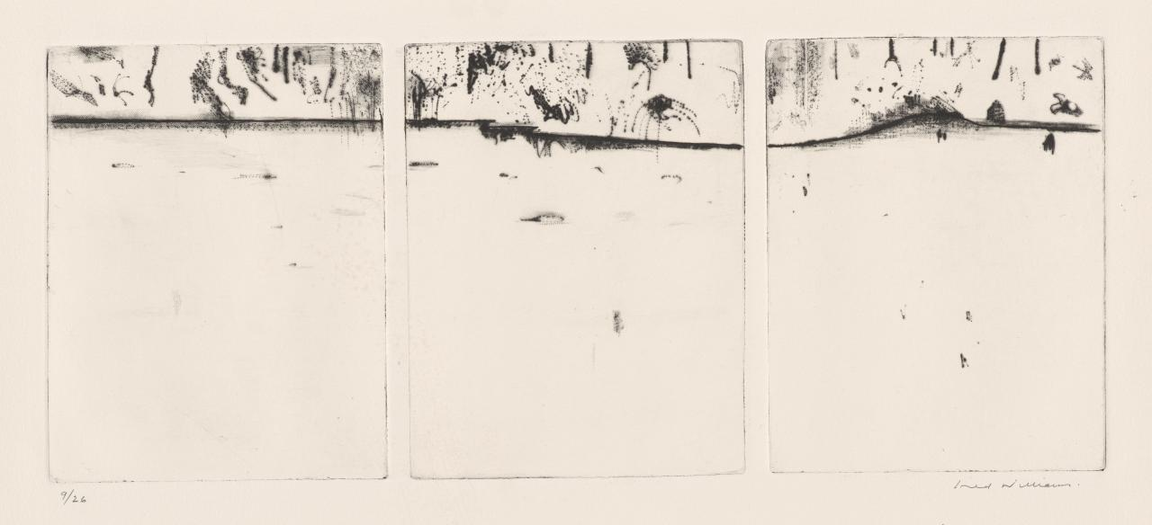 Forest pond triptych