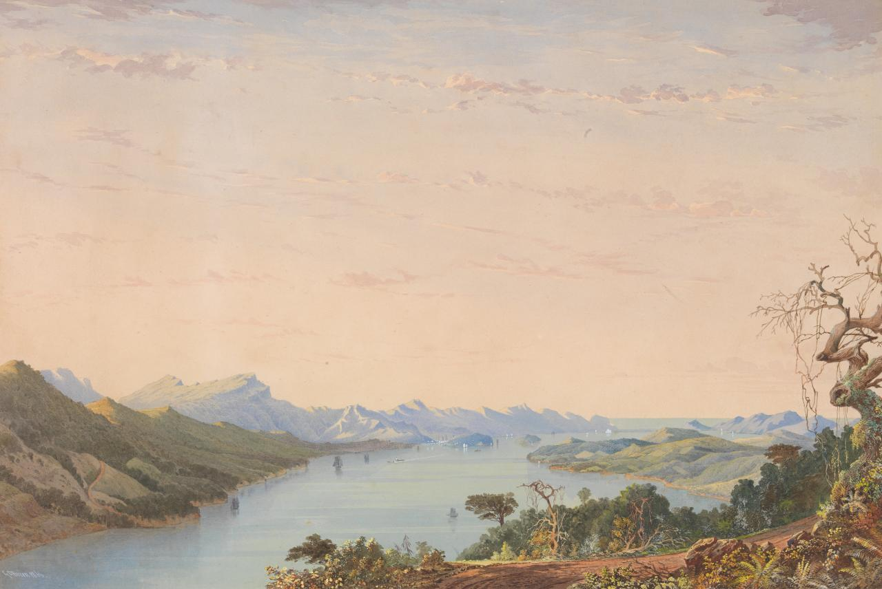 Otago Harbour from the Portabello Road