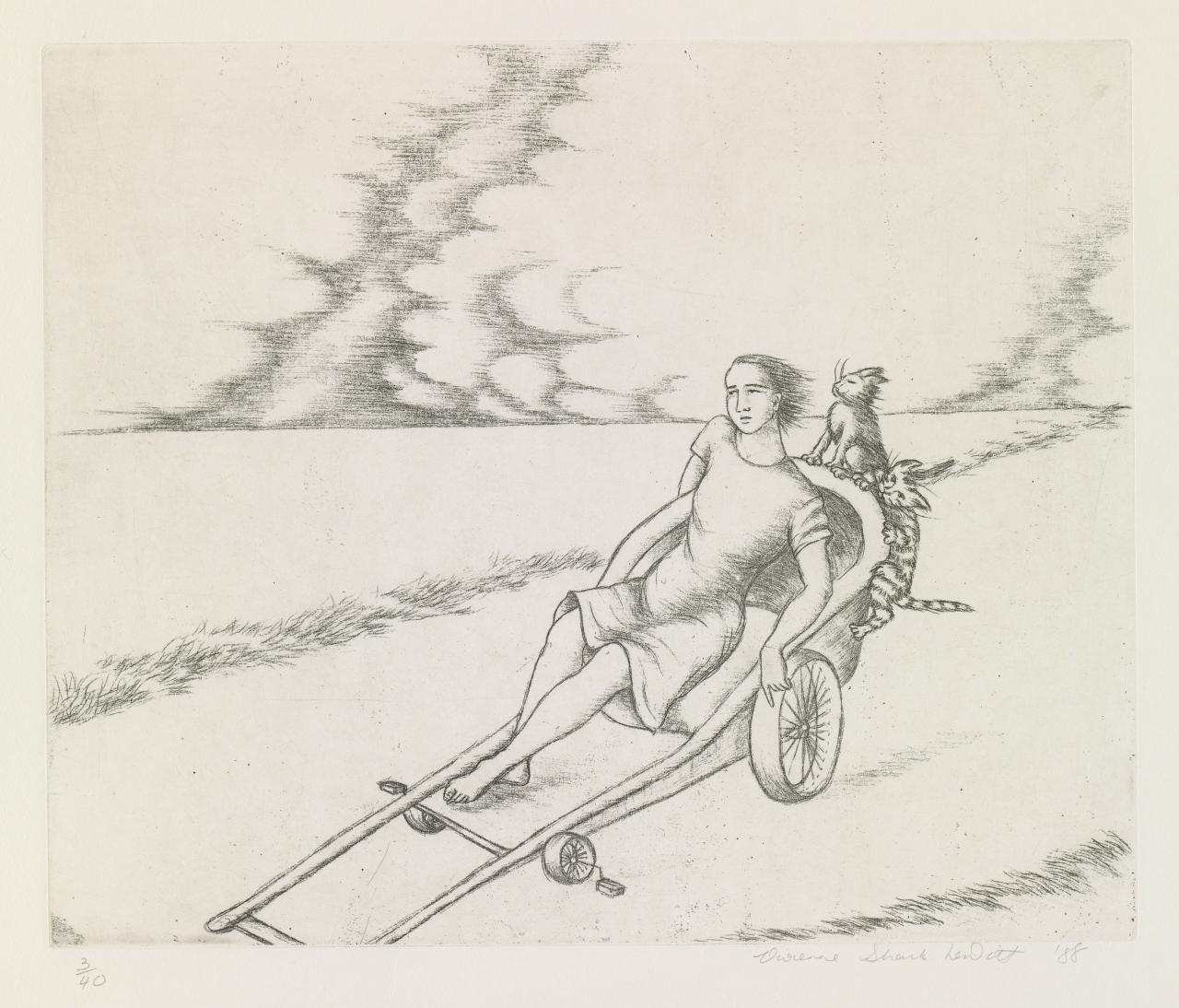 Untitled #2 (Woman on a cart with two cats)