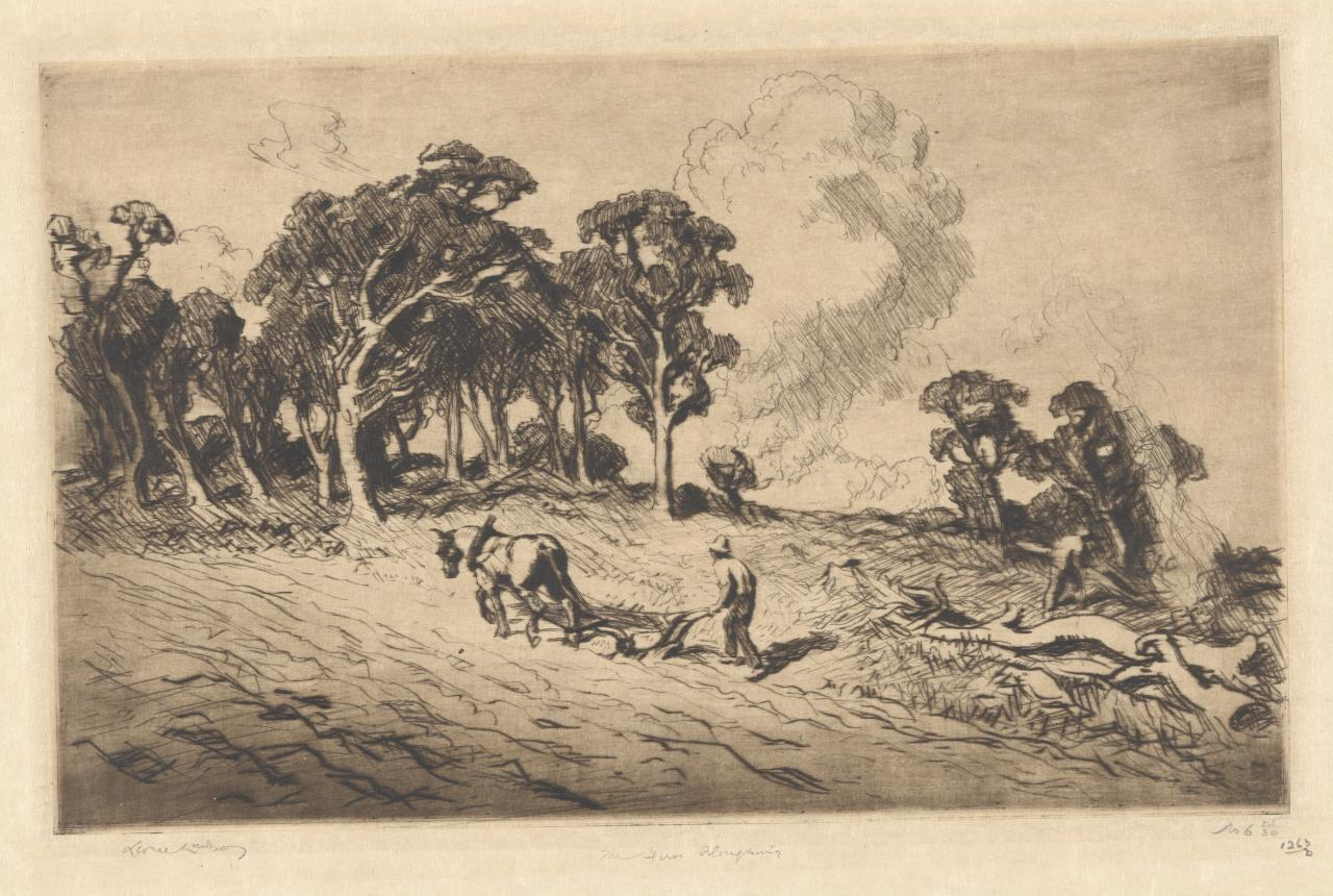The first ploughing