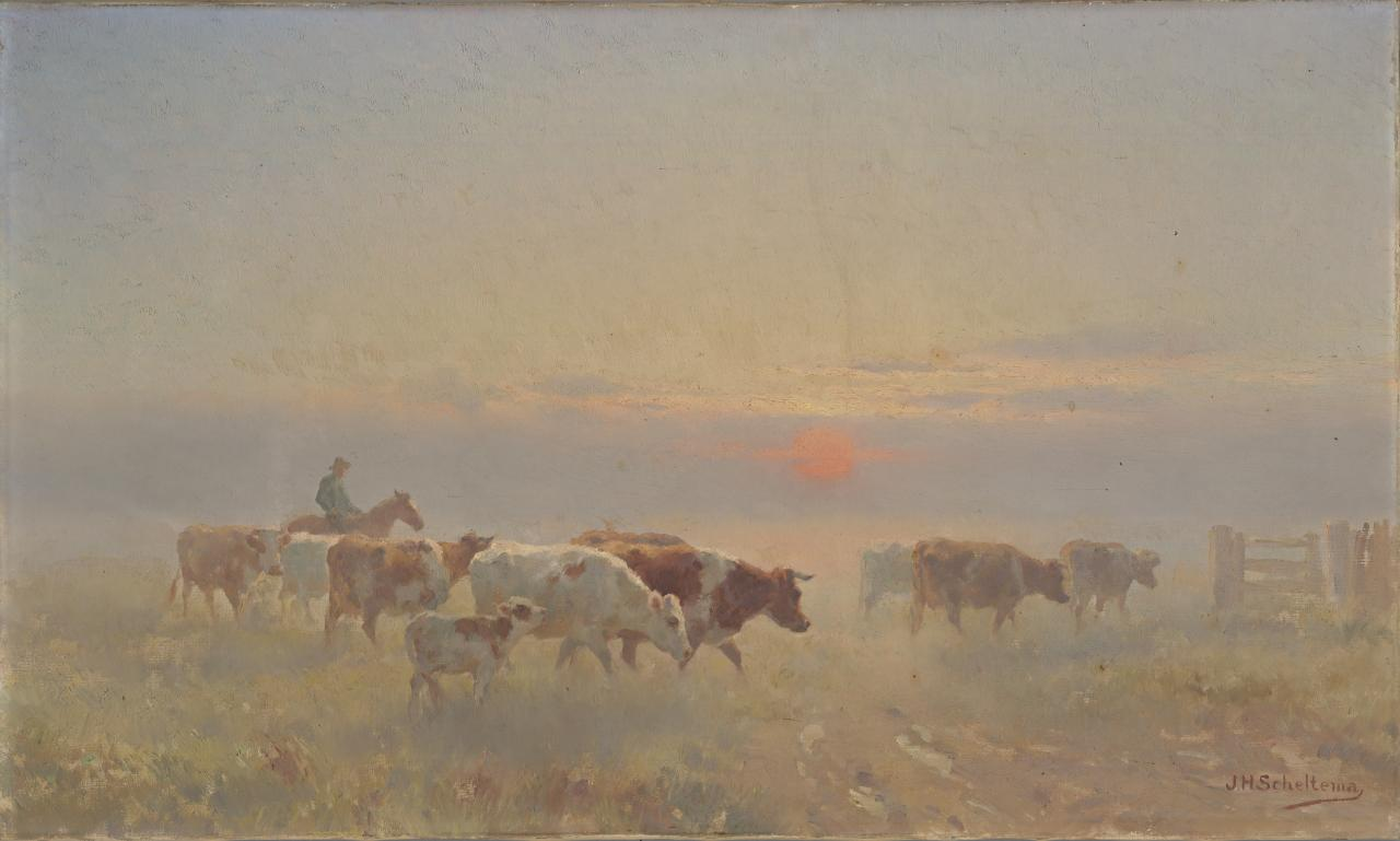 Driving in the cows, sunrise