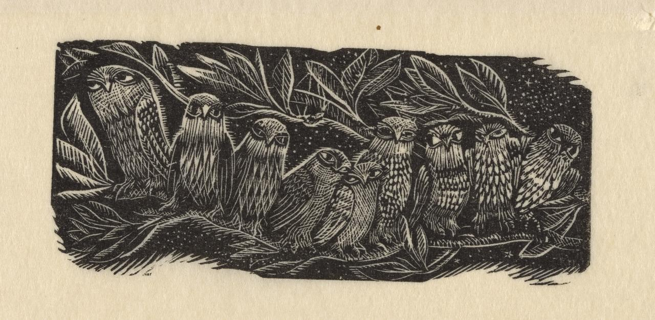 (Owls perched along a branch)