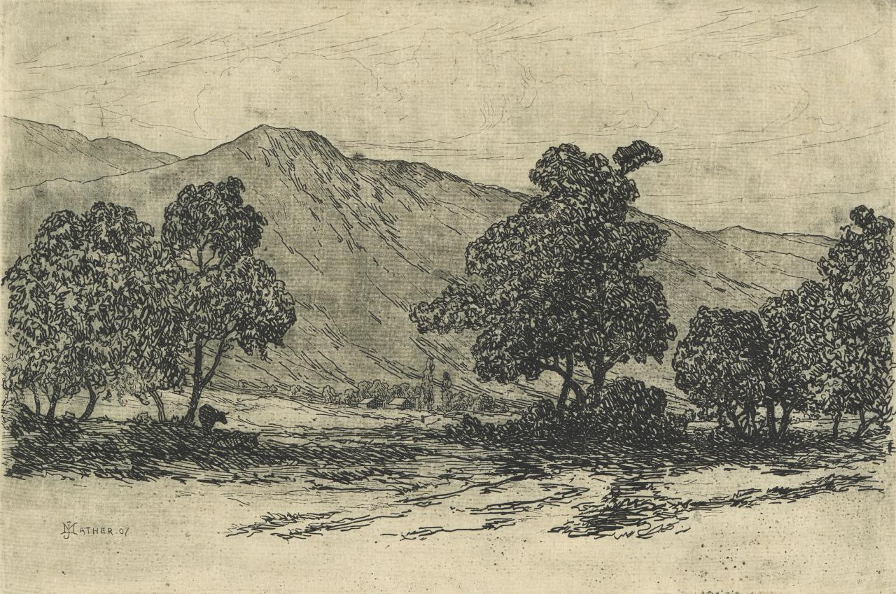 Landscape with cows resting in the shade