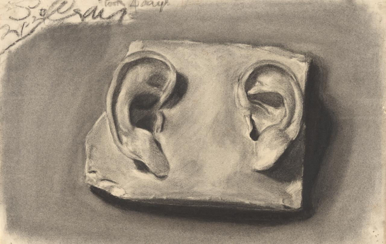 Plaster cast of two ears