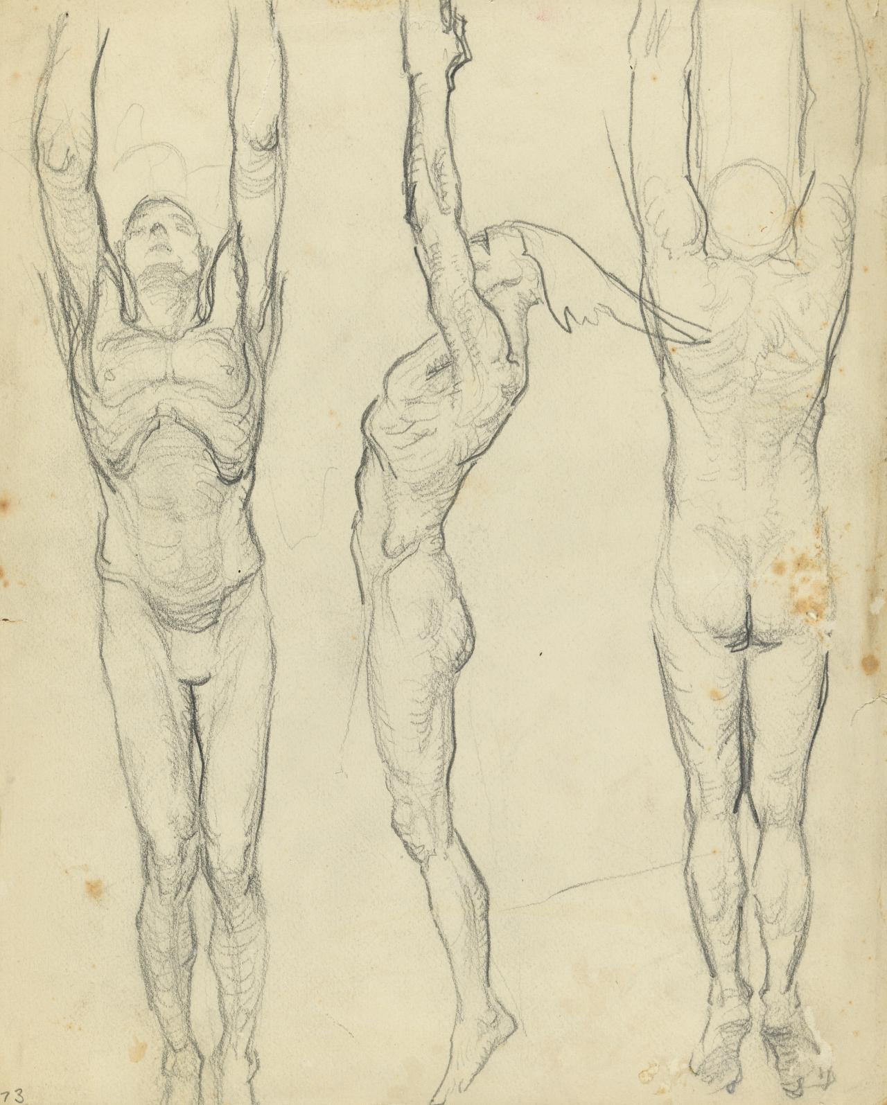 Three male studies