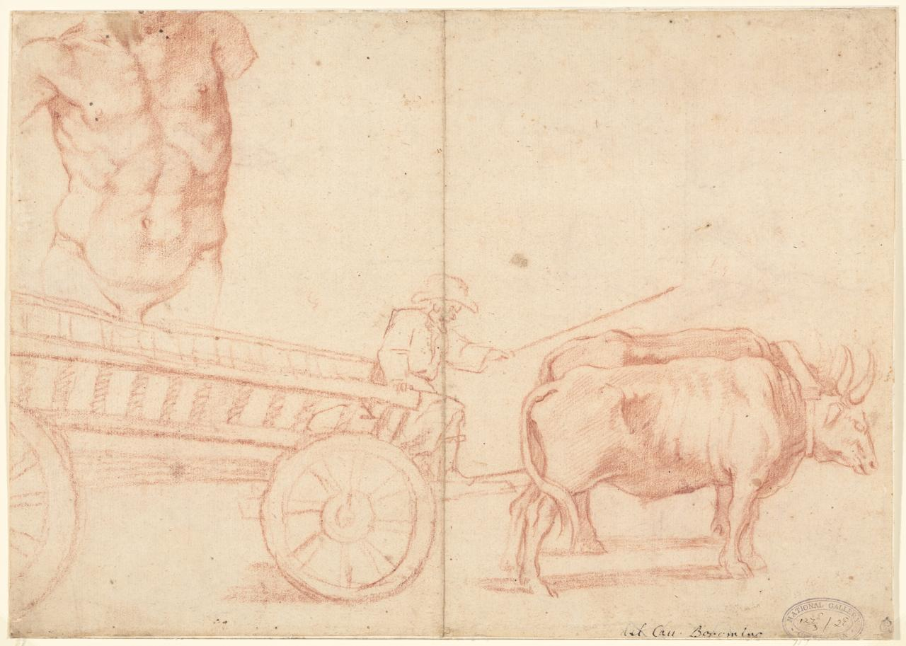 Sheet of studies with oxen drawing a cart and a male torso
