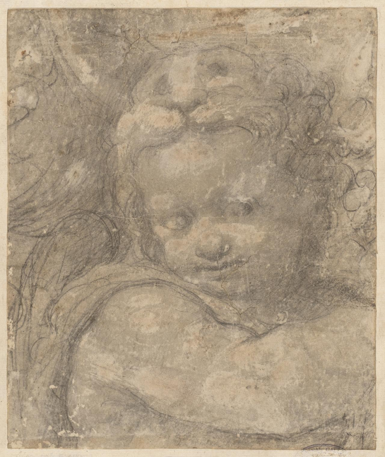 Head of a Putto, cartoon fragment
