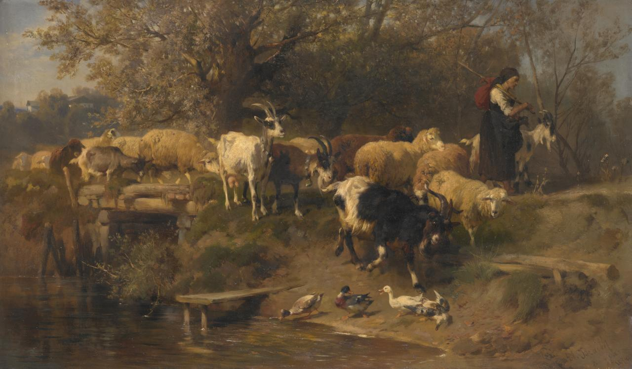 Shepherdess with sheep and goats