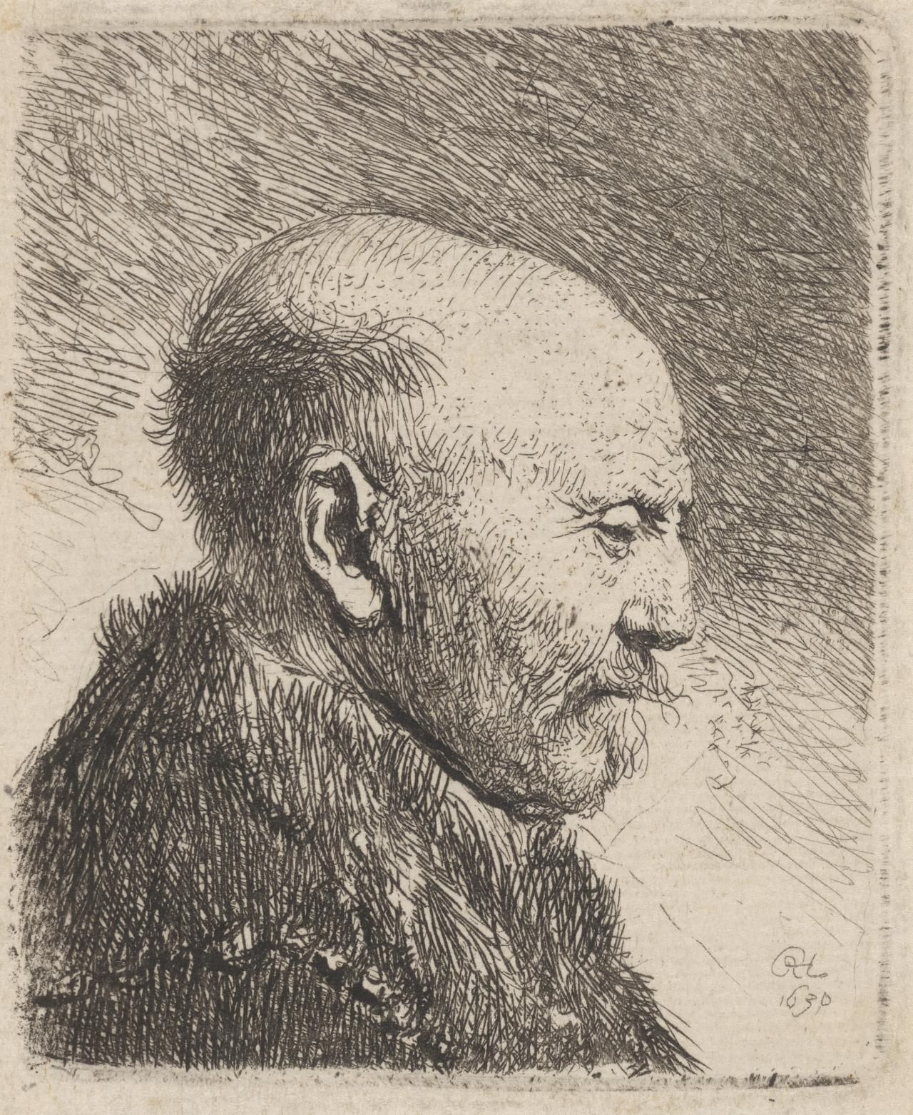 Bald-Headed Man (Rembrandt's Father?) In Profile Right