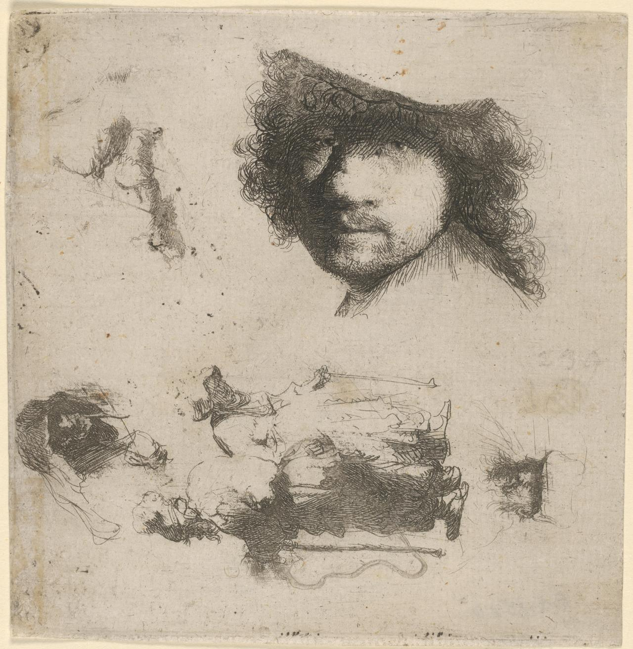 Sheet Of Studies: Head Of Rembrandt...