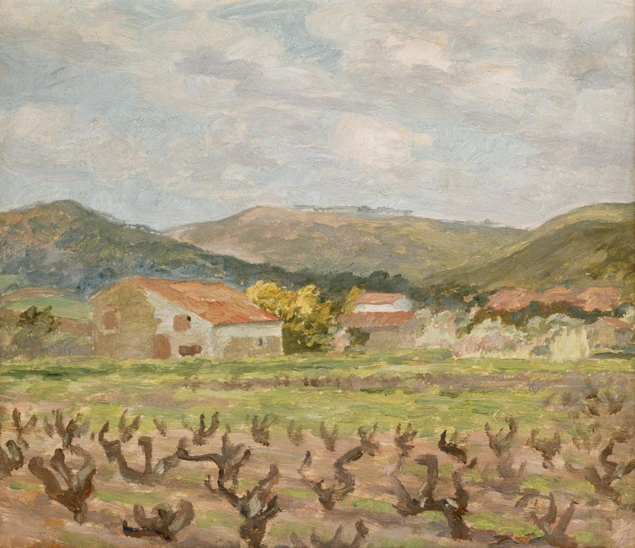 (Vineyard, Sanary)