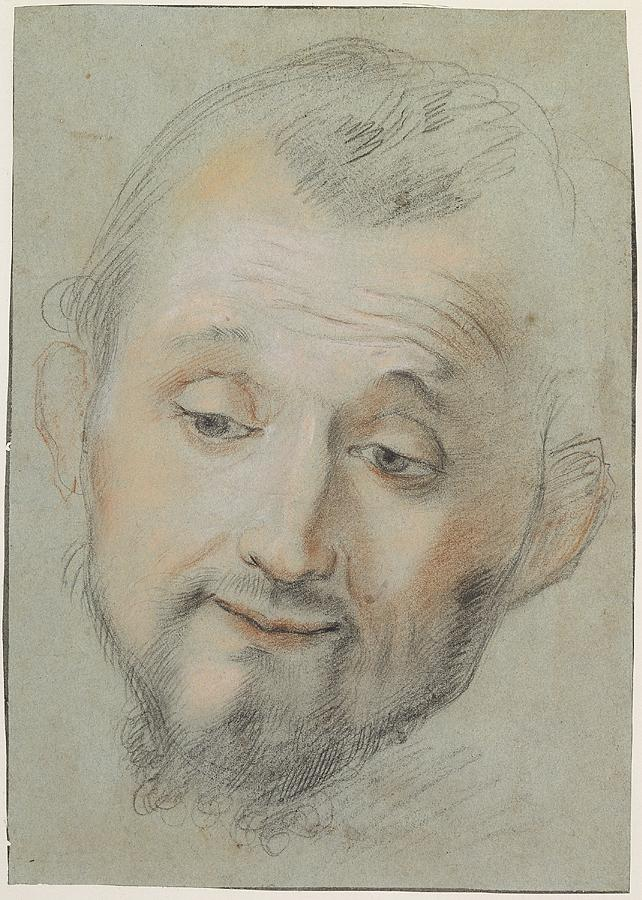 Head of a bearded man looking down