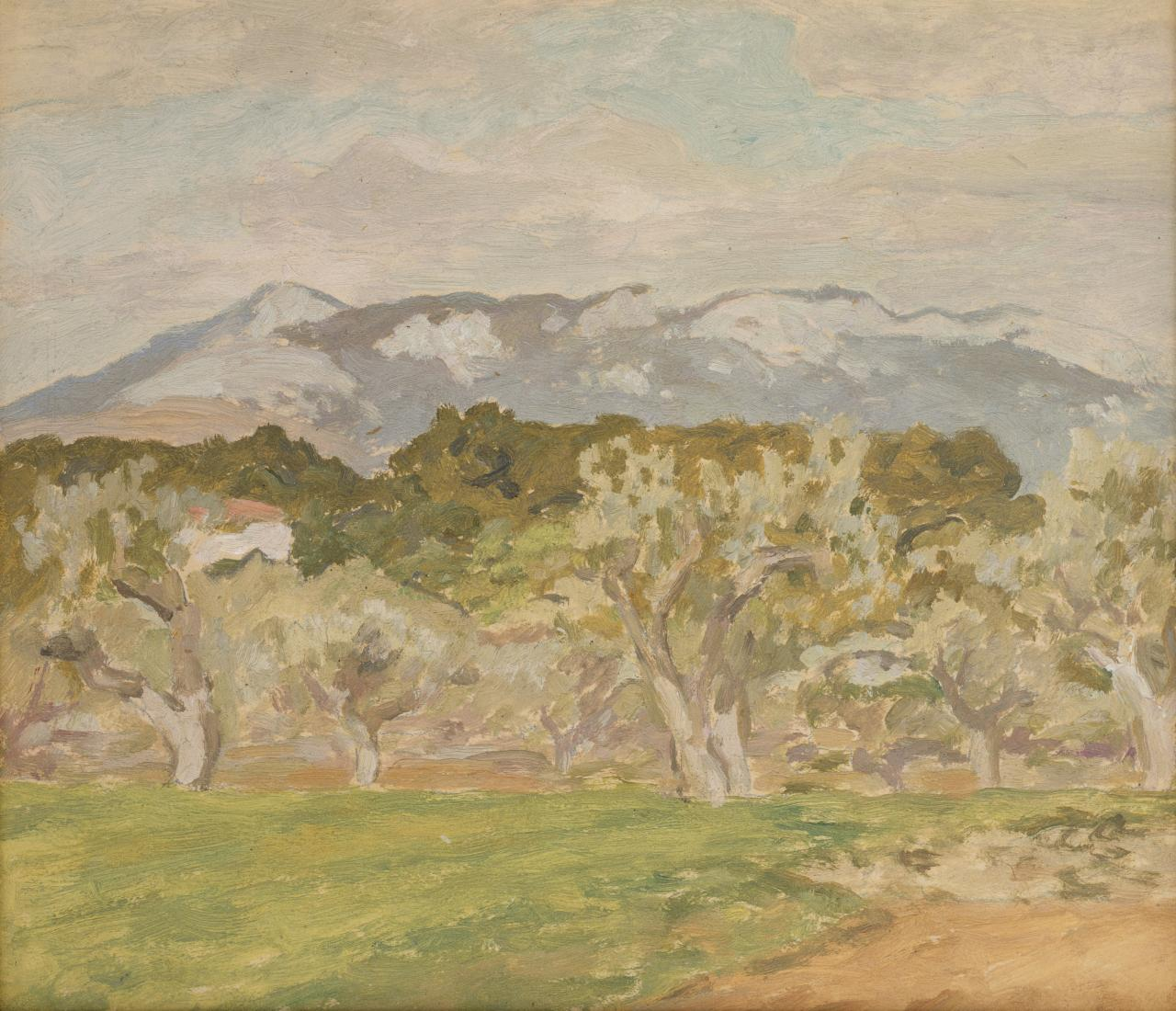 Sketch for Olive trees, Sanary