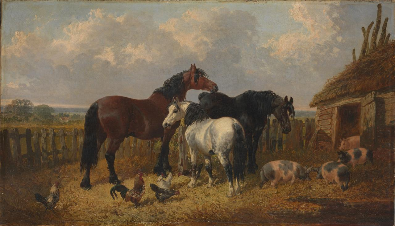 Horses and pigs