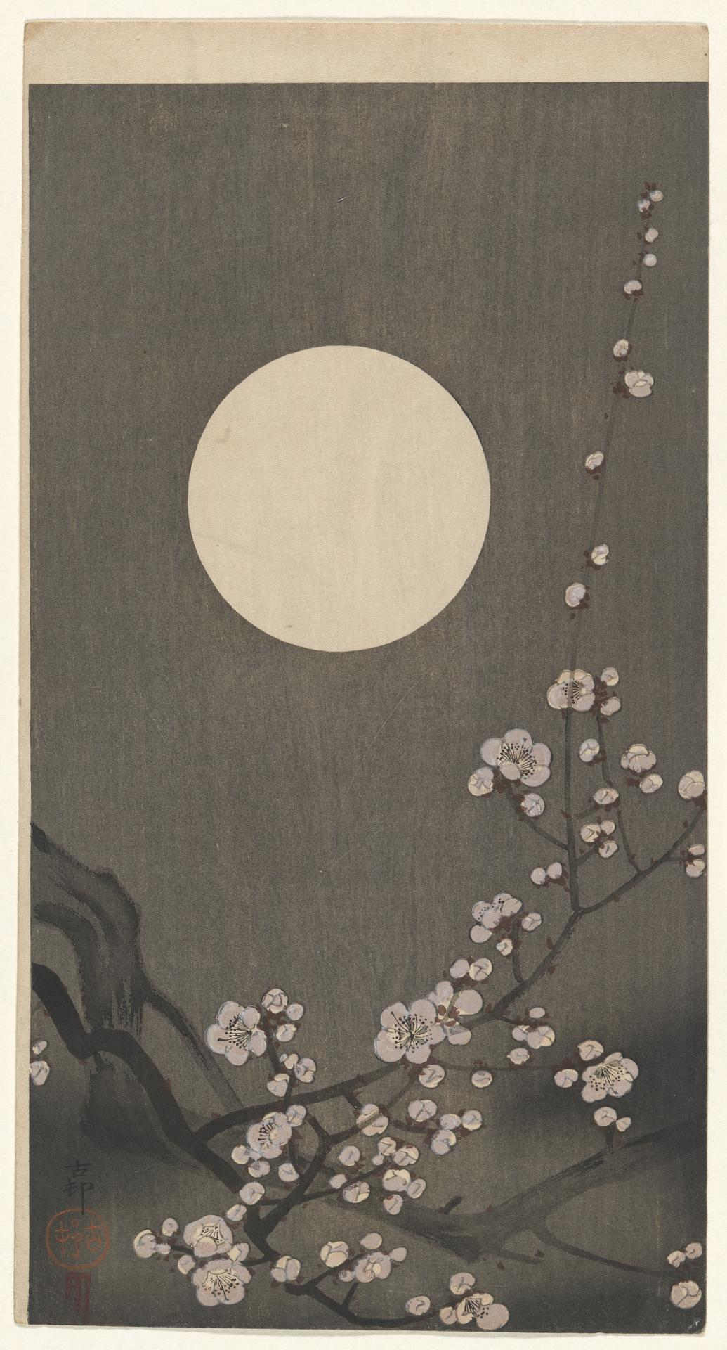 Plum blossoms and the moon