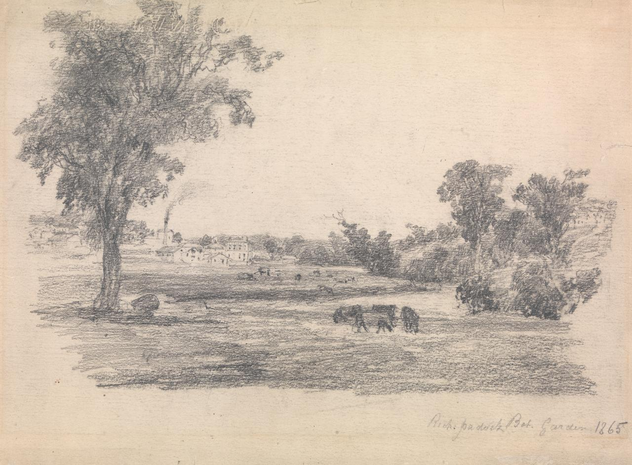 Richmond paddock at the foot of Punt Road