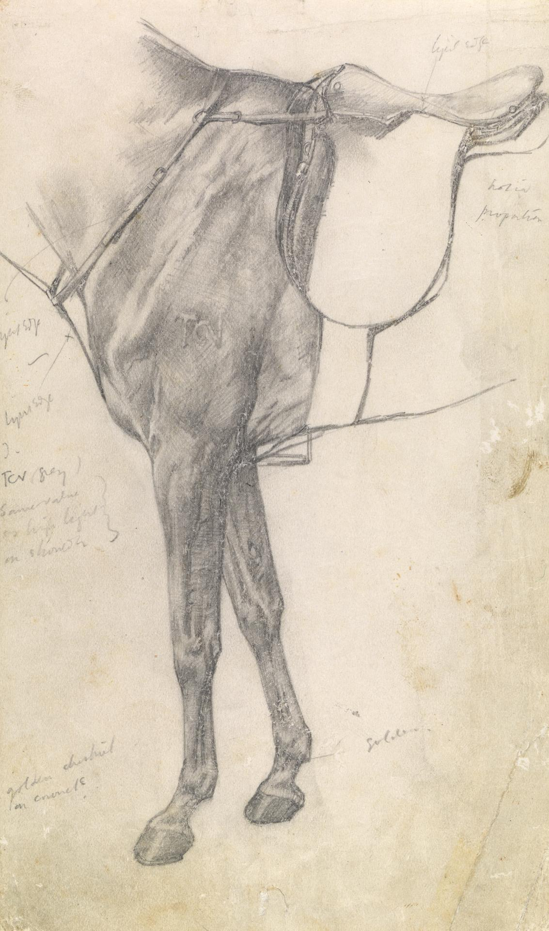 Study of the fore-quarters of a horse with saddle