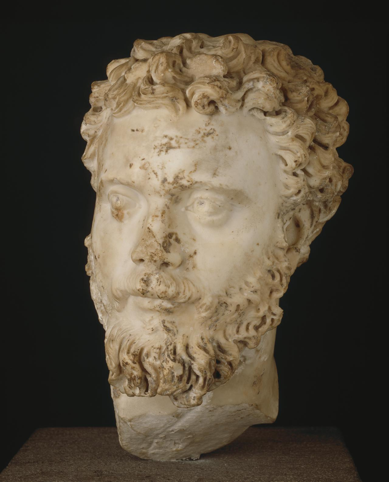 Head of Septimius Severus