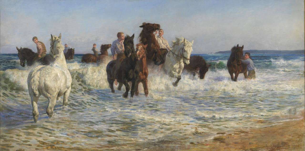 Horses bathing in the sea