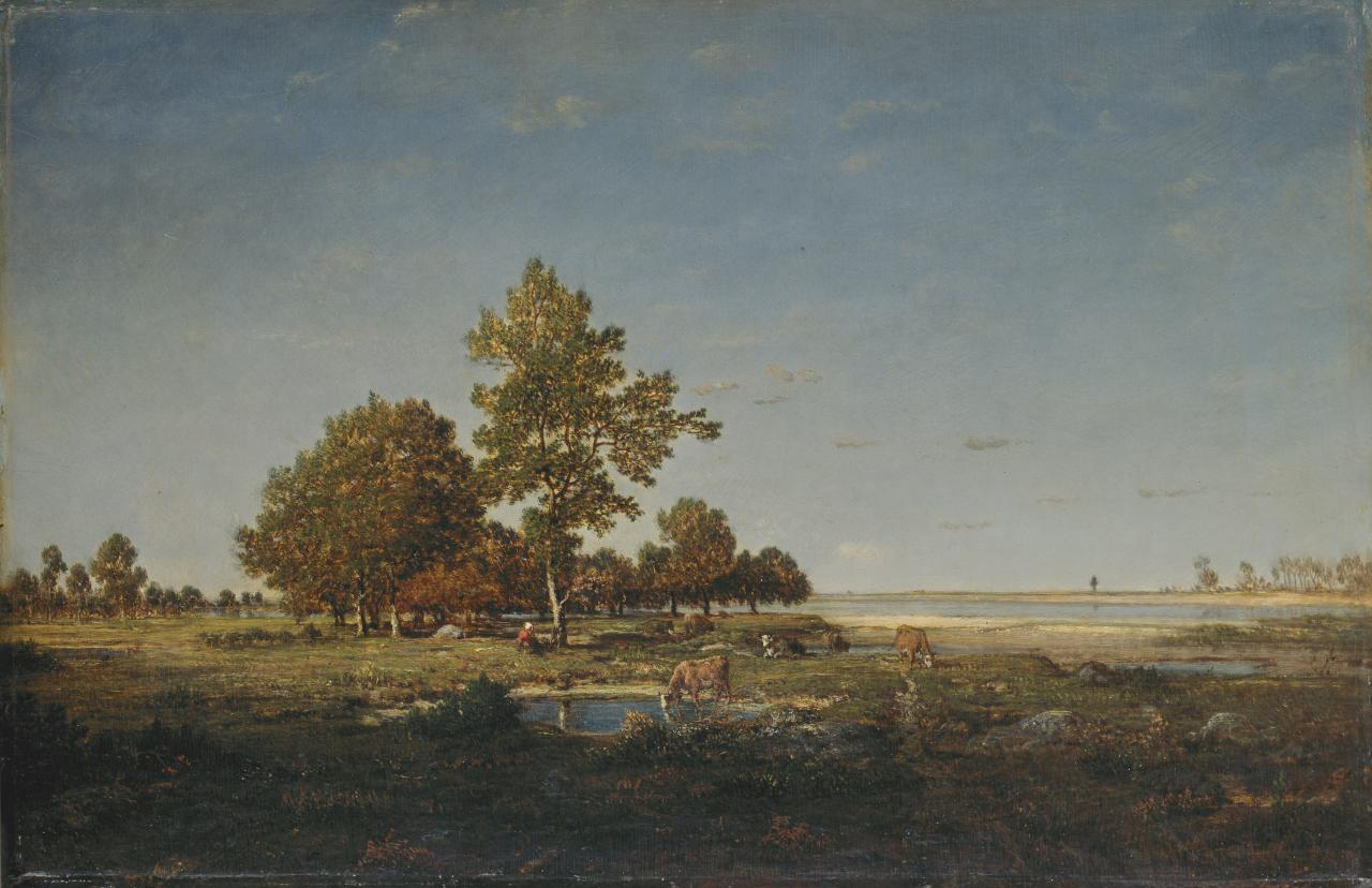 Landscape with a clump of trees