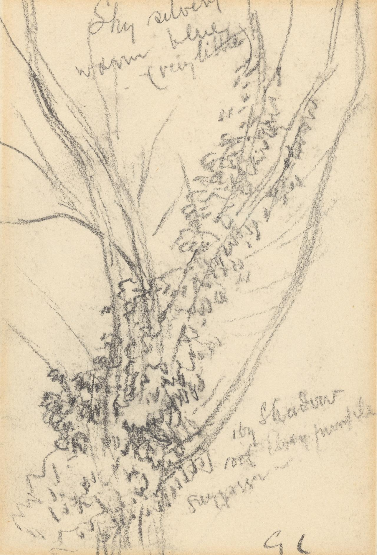 Tree trunks; Study for the Ploughman's Breakfast